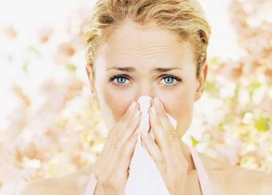 Say 'Adios' To Allergies