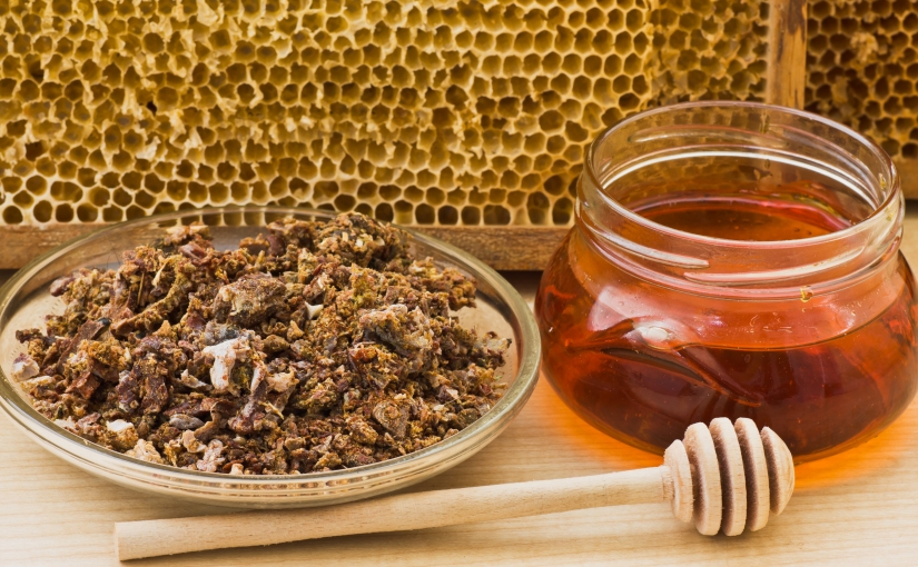 Borrowing from the BEES The Health Benefits of Propolis part2